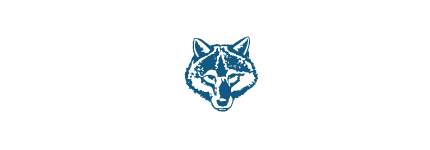 Cub Scout Pack 313 - Federal Way, WA
